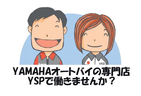 YSPで働きませんか